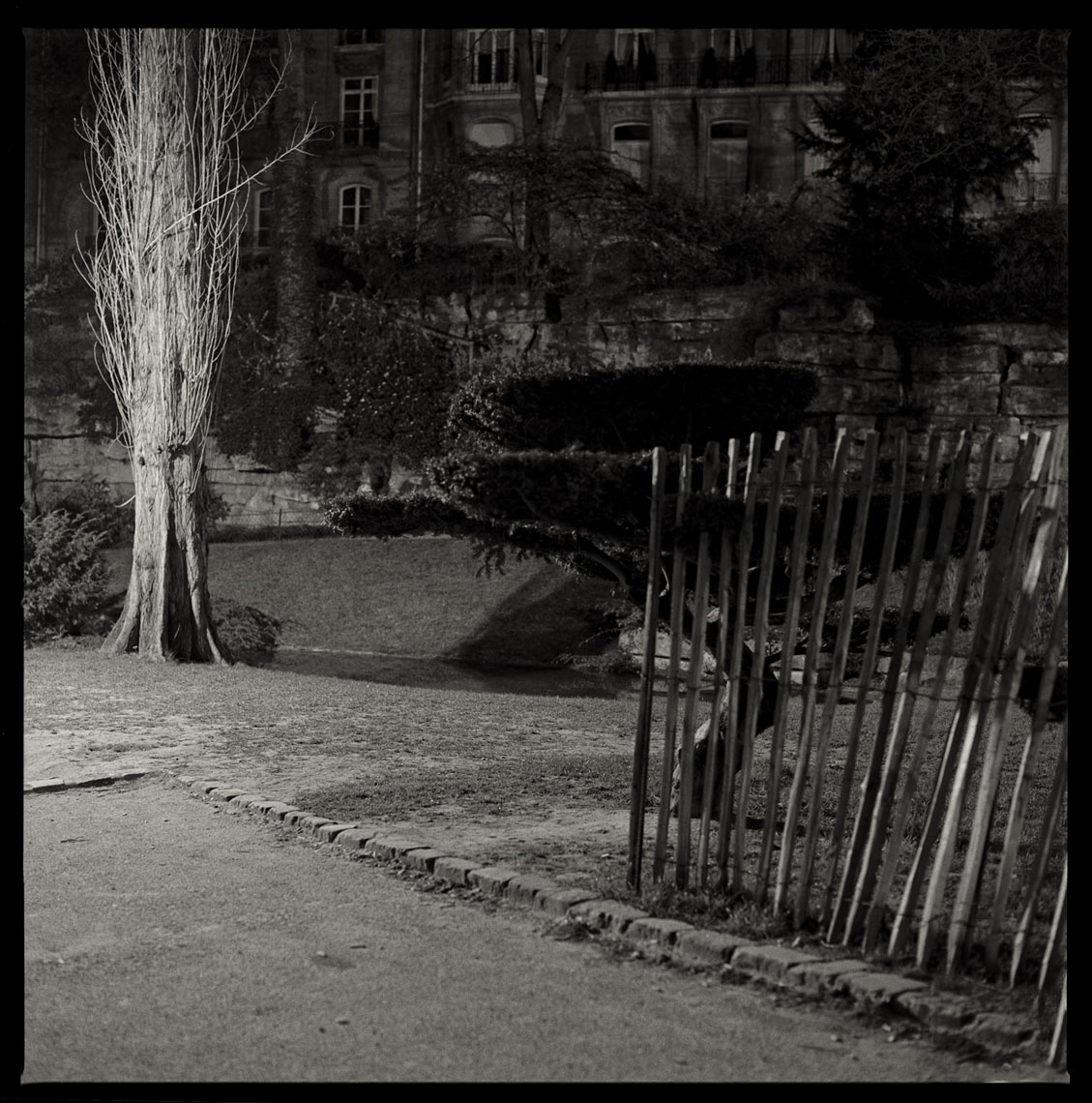 Paris-Botanicals-002-Edit